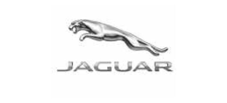 Jaguar new